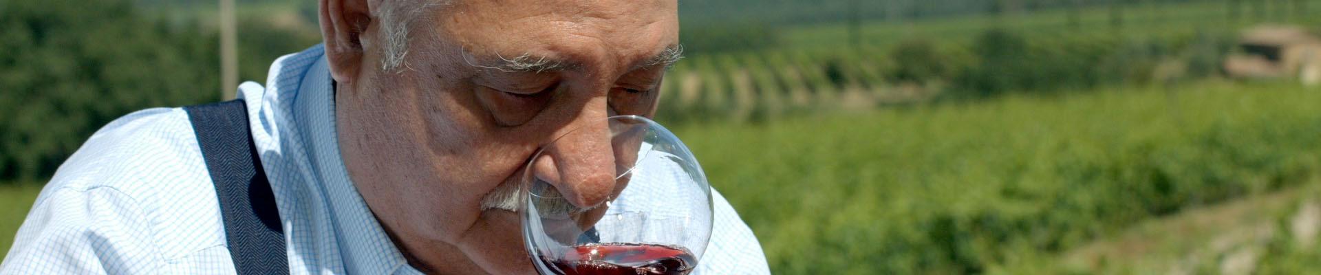 cos'è un grande vino secondo Gianfranco Soldera