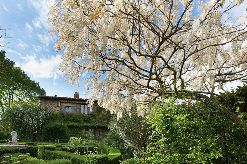 giardino botanico soldera case basse a montalcino (5)