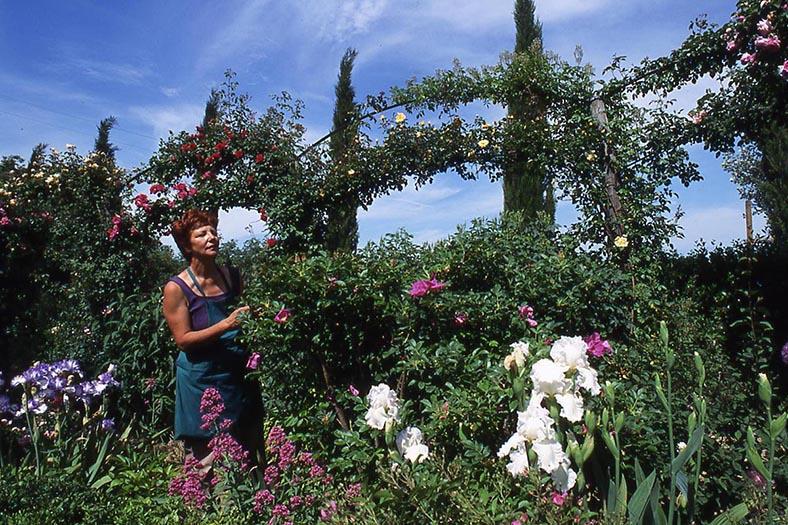 giardino botanico soldera case basse a montalcino (8)