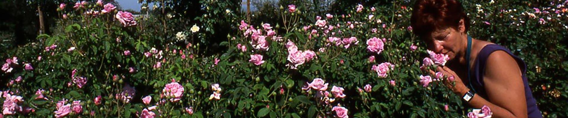 Giardino botanico Case Basse - Soldera